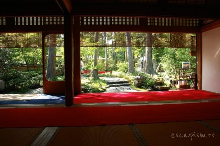 ceremonie ceai japonia