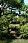 templu apa kyoto 02