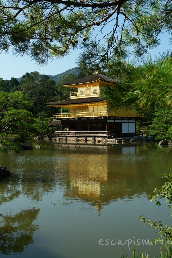 templu kinkakuji 01