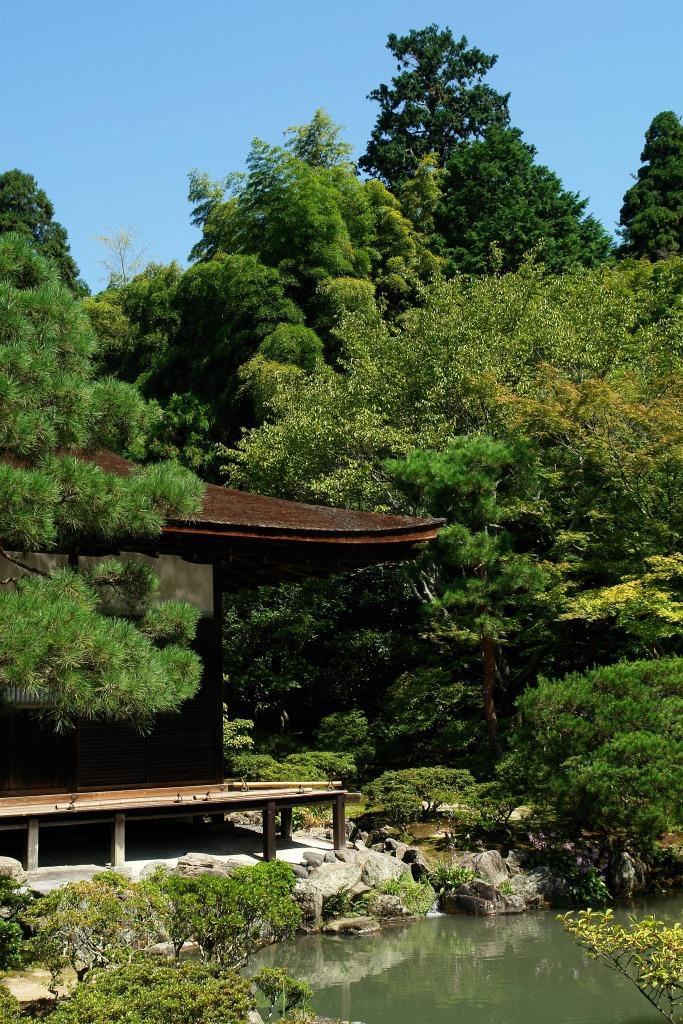 Templu-natura-Kyoto
