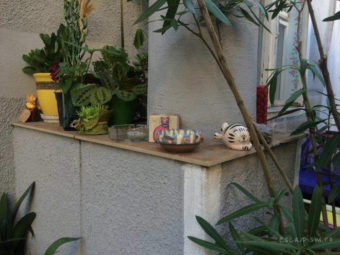 cafeneaua miau bucuresti exterior 7