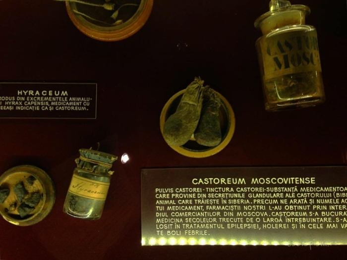 muzeul-farmaciei-cluj-vitrina-glande-castor