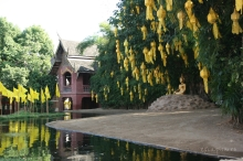 Chaing-Mai-templu-gradina