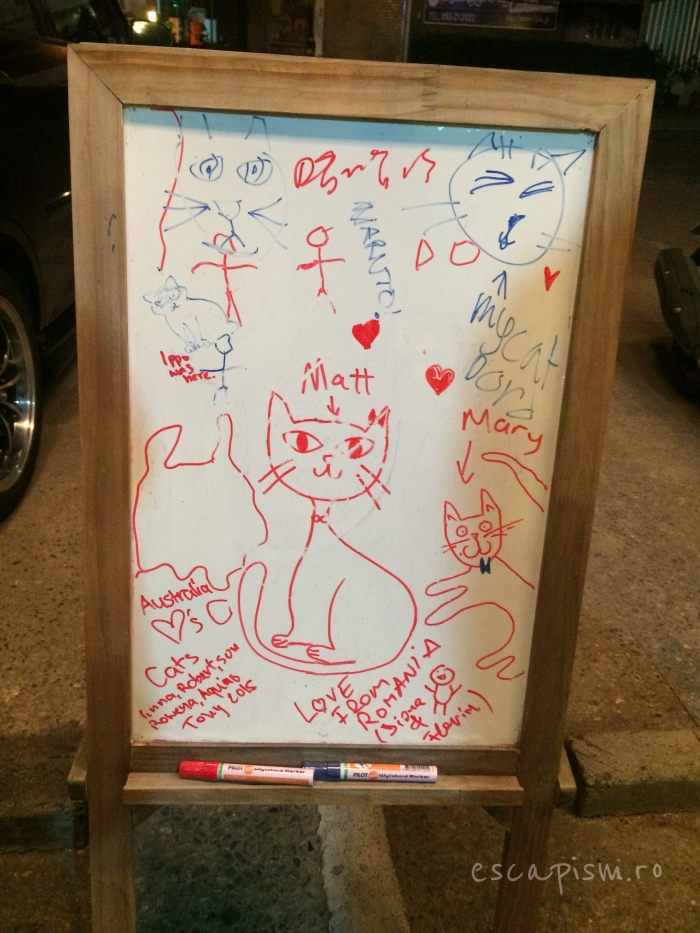 Catmosphere-Cafe-Chiang-Mai-Drawing-Board