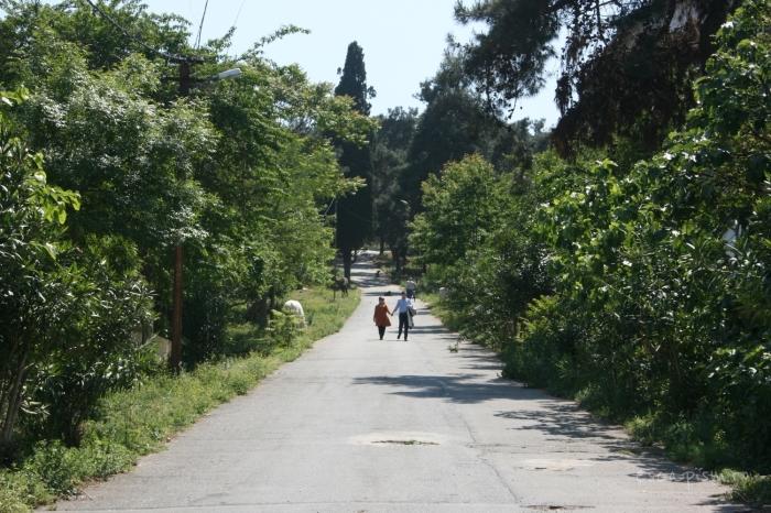 buyukada-Istanbul-plimbare-natura